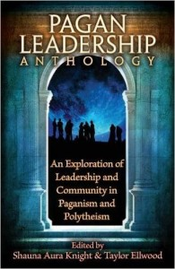 Pagan Leadership Anthology